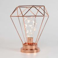 Metal Rose Gold Battery Lamp with Wire Lights, Warm White ...
