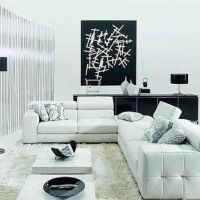 Inspiring Wonderful Black And White Contemporary Interior Backgrounds Home Design White For App Smartphone Hd Pics