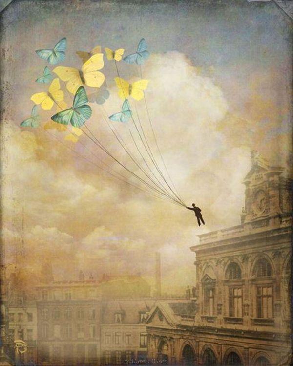 Christian Schloe Art Butterflies
