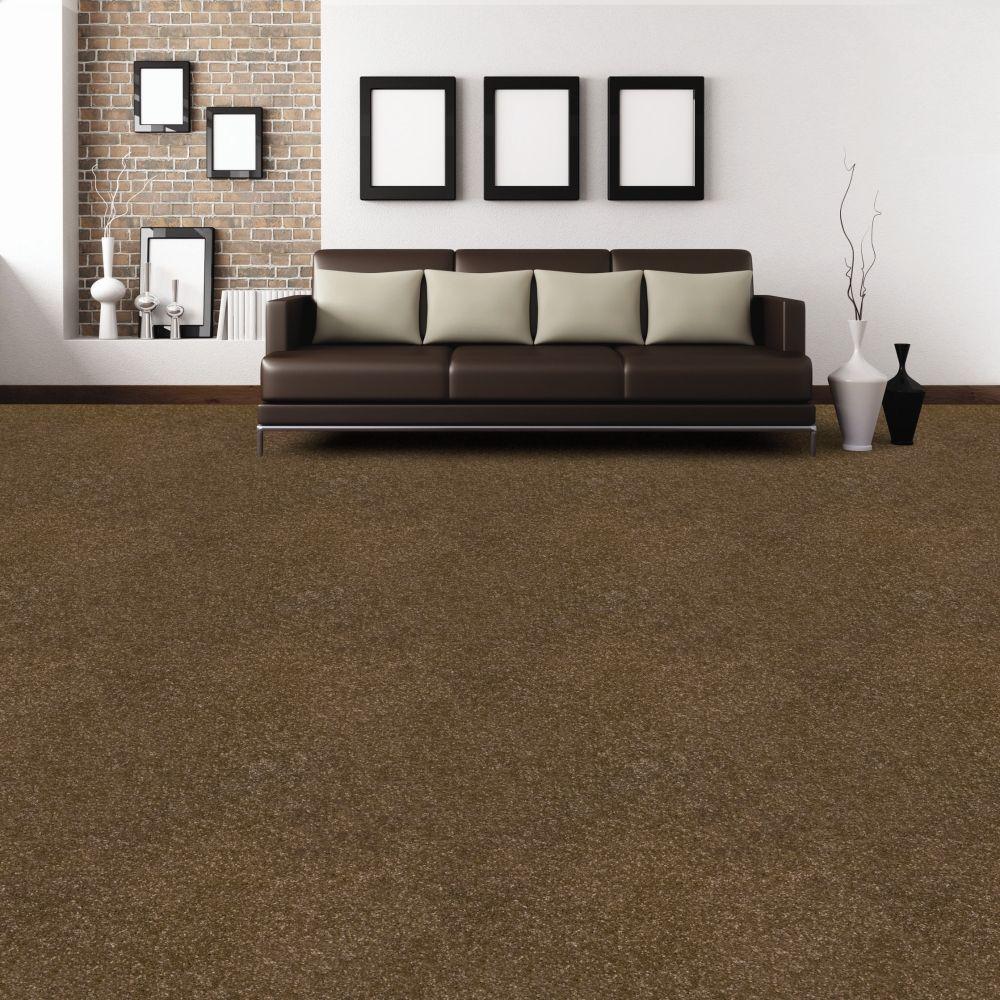 dark brown carpet, neutrals.