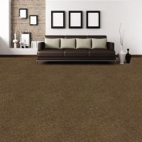 dark brown carpet, neutrals. | Rooms We Wish We Had ...