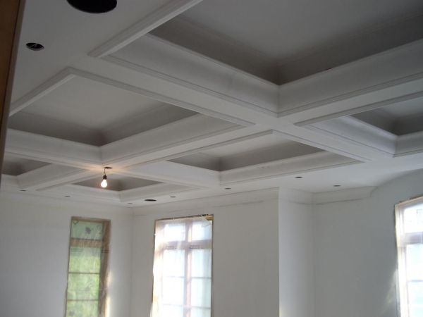 Plaster Crown Molding Ceiling Design