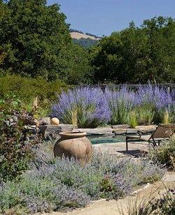 Pottery In Mediterranean Garden Design Outdoor Spaces