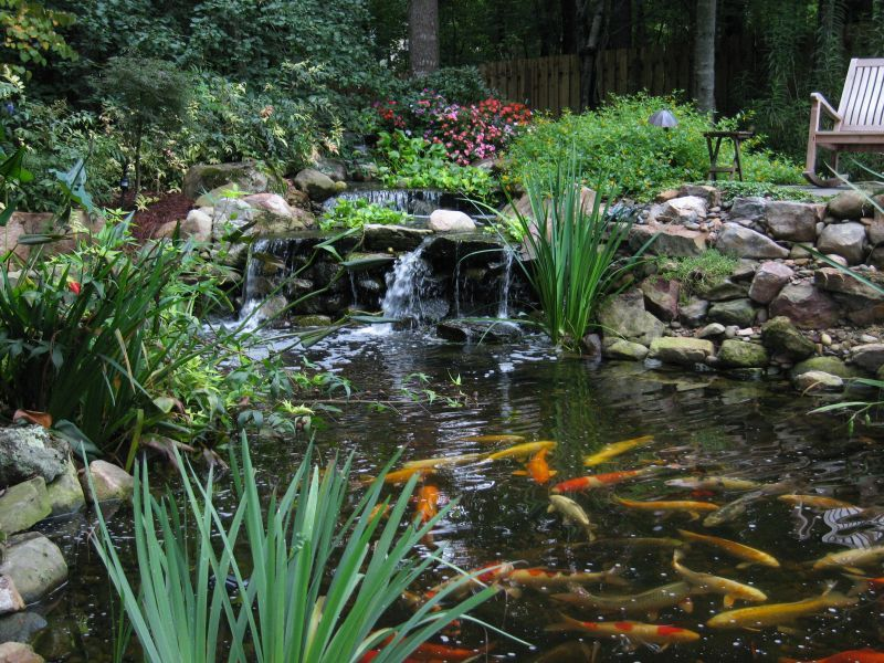 Koi Pond Waterfall Ideas