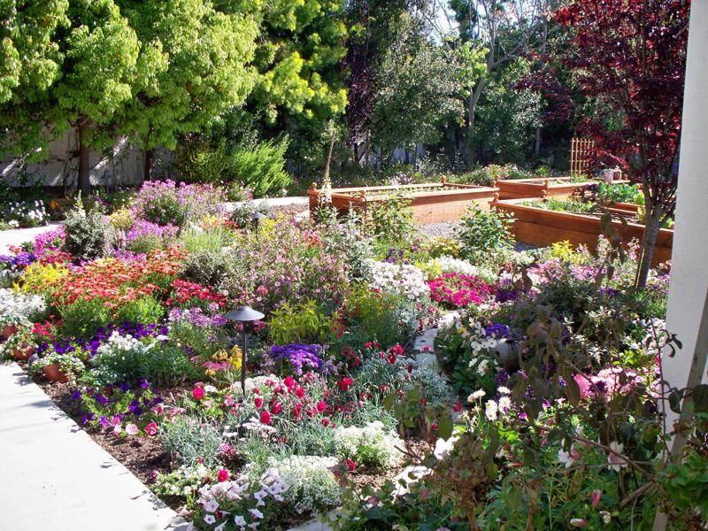 Southern California Small Garden Ideas