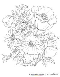 What a beautiful flower adult coloring page!   Colouring ...
