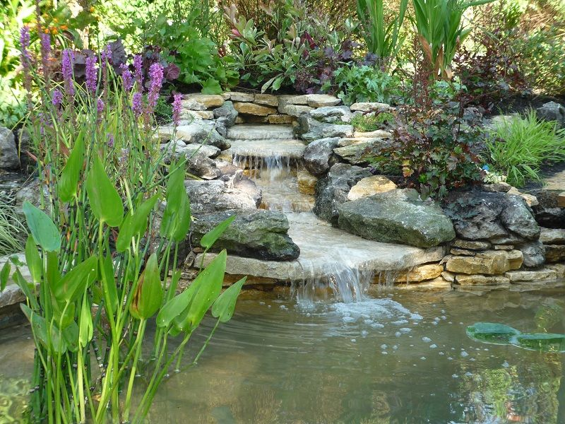 Back Yard Ponds And Waterfalls Ideas This Backyard Pond And