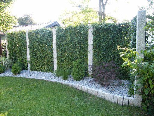 efeuhecke an granitstelen mobilane fertighecke pflanzfertige heckenelemente fertiger sichtschutz garten bronder