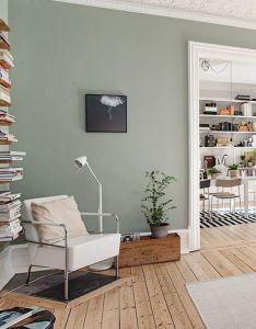 Sage green decorating ideas pepino home decor also inspiratie tips voor kleur in je woonkamer woonblog meubels rh pinterest