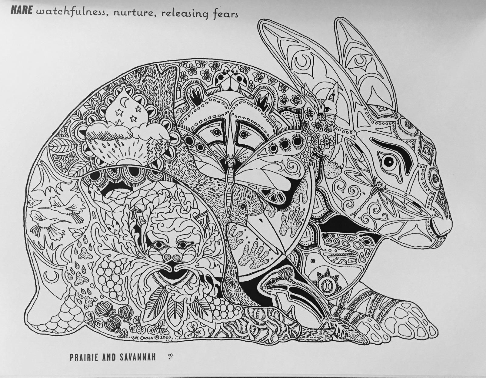 Adult Coloring Book Color Yourself To Calmness