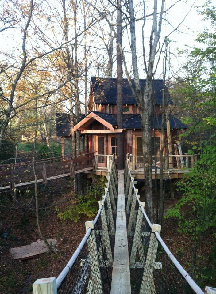 This is the bridge they built for the Treehouse Master