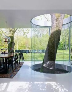 Tree growing inside the house surrounded by  glass cylinder home trees modern living room interior design interesting ideas homes also moderne architektur trifft baumhaus kreatives aus holz pinterest rh