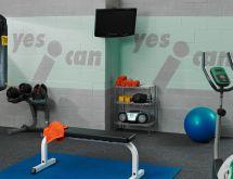 Best Basement Paint Colors for Gym
