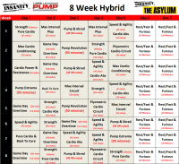 8 week Hybrid of Insanity,Les Mills Pump and Insanity ...