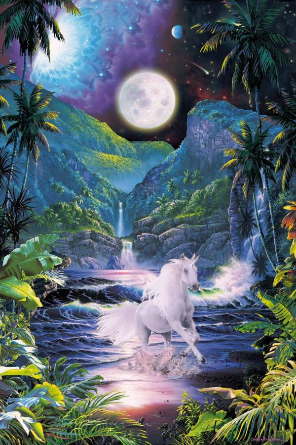 Moonlit Beach Unicorn Fairy Magic
