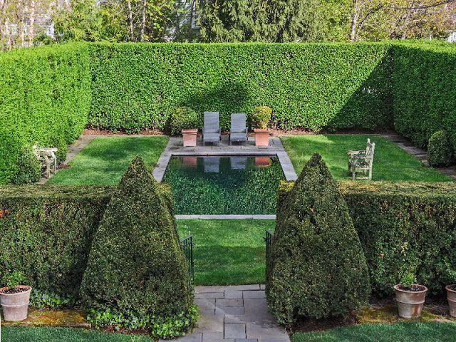 Privacy hedge around pool