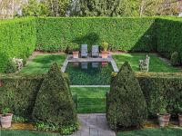 Privacy hedge around pool | Outdoor Obsessions | Pinterest ...