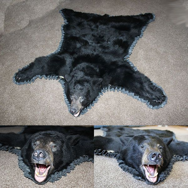 Black Bear Skin Rugs for Sale