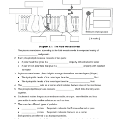 Cell Membrane Diagram Worksheet Single Phase Motor With Capacitor Forward And Reverse Wiring Google Search Movement Across