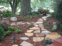 Stone Walkway In Shade Garden   Wooded Back Yard Ideas ...