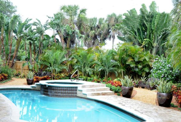 boca raton florida pool landscape