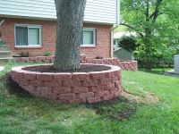 Landscaping around Trees | Professional Stone Work, Silver ...