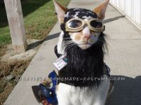 One of A Kind Biker Cat Costume | Costumes, Cat and Doggies