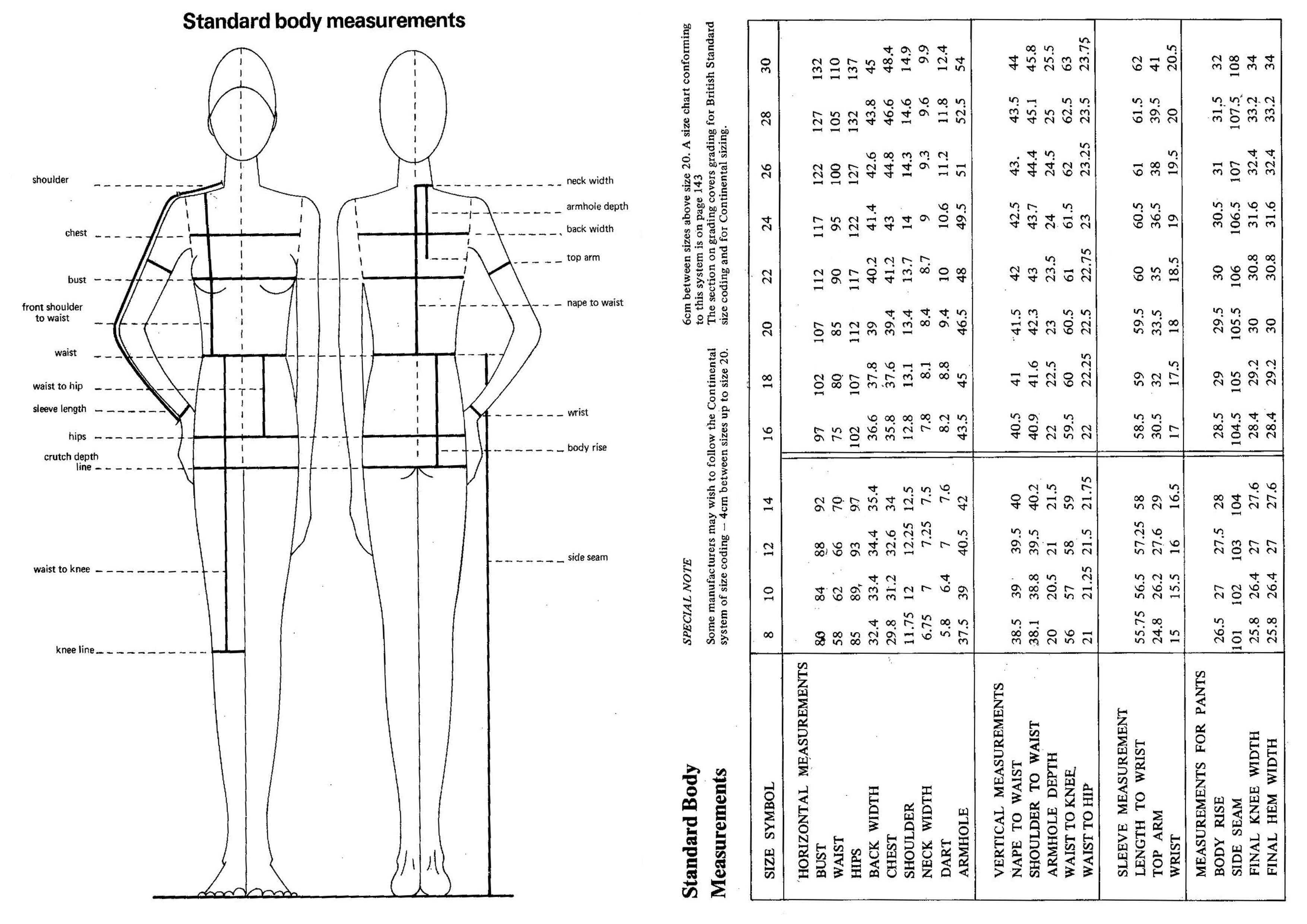 Standard Body Measurements