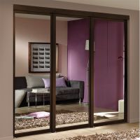 Espresso Mirrored Sliding Closet Door