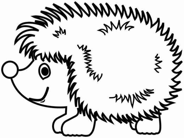 omalovánky zvířata omalovánka ježek k vytisknutí pro děti