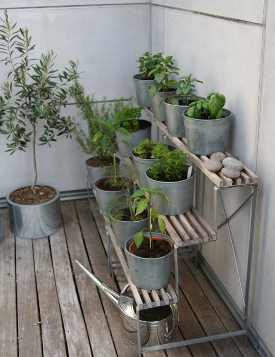 Look! Terraced Herb Garden Gardens Decks And Herbs Garden