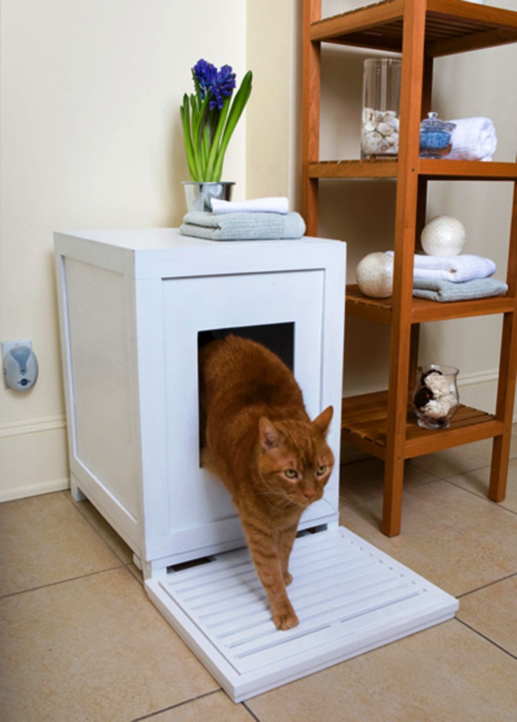 Indoor Cat House Design Ideas Real House Design Cat