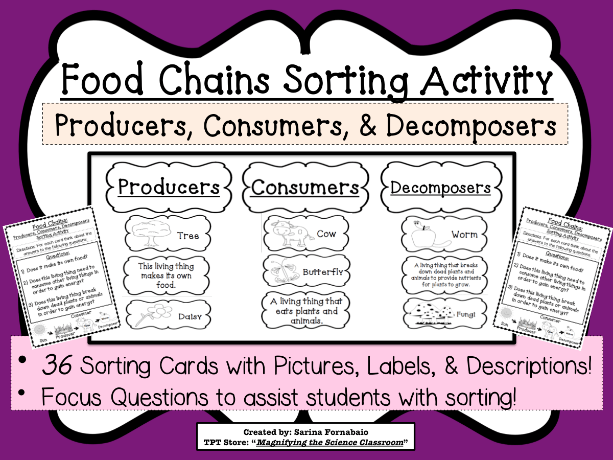 Food Chains Sorting Activity Game About Producers