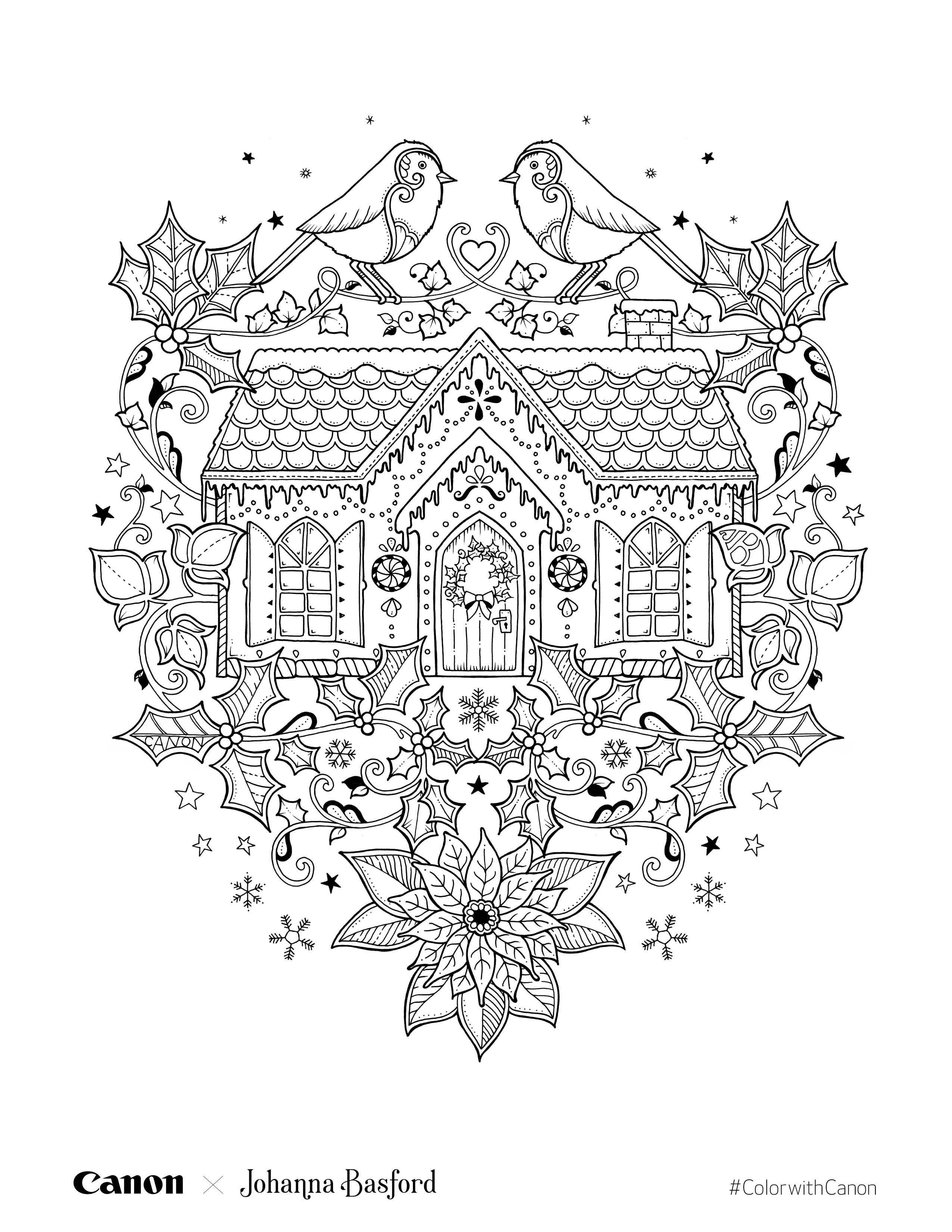 Rabbit Page In Johanna Basford Christmas Coloring Book | Magical ...