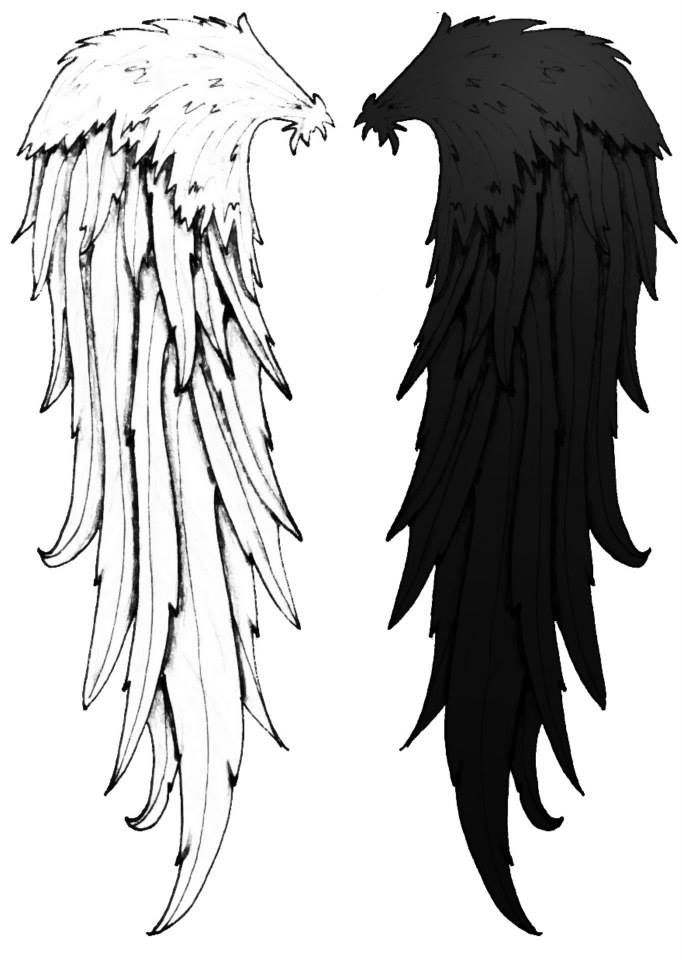 Cool Cool Angel Wings Black And White Tattoo Idea Cute