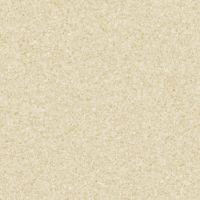 Light Beige Carpet Texture