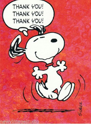 Hallmark 2011 NEW SNOOPY Peanuts Thank You Cards 12 12