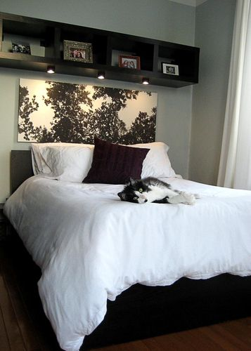 Bookshelf hung on wall with lights installed to create  cool look for over the bed also rh pinterest