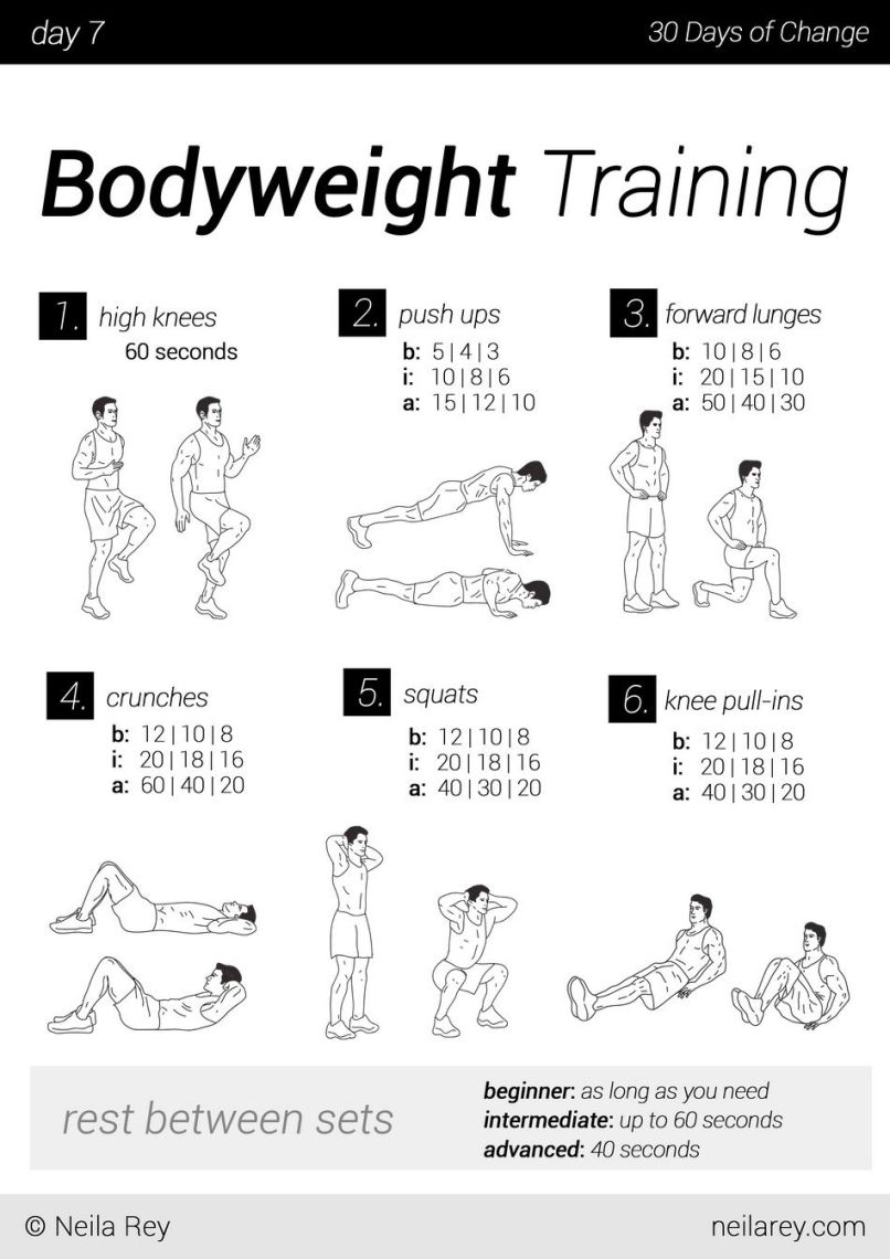 No Equipment 30 Day Workout Program Programs