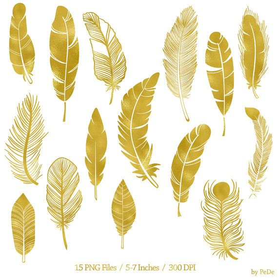 3 6 usd gold feather clip