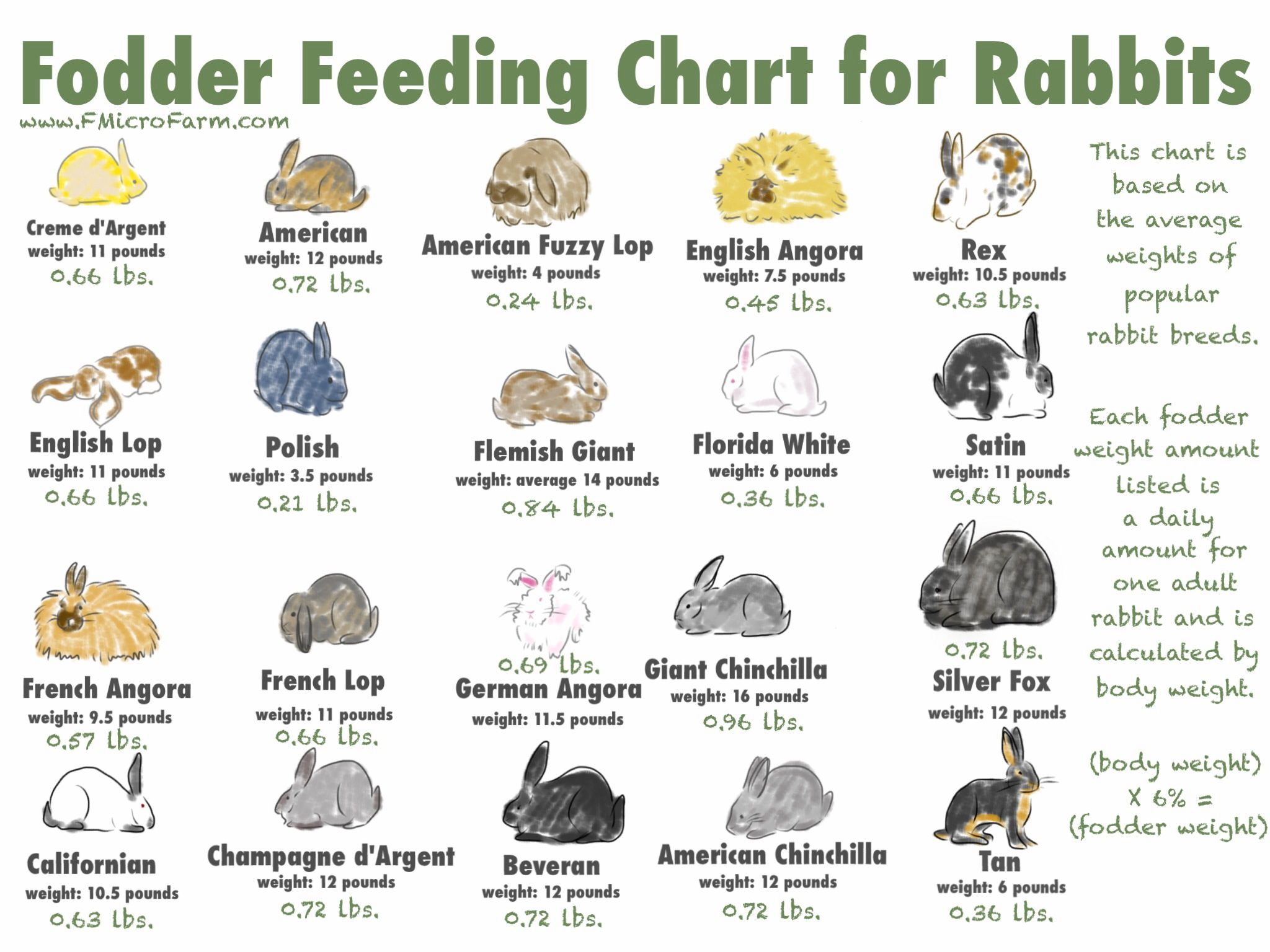 Fodder Feeding Chart For Rabbits Printable
