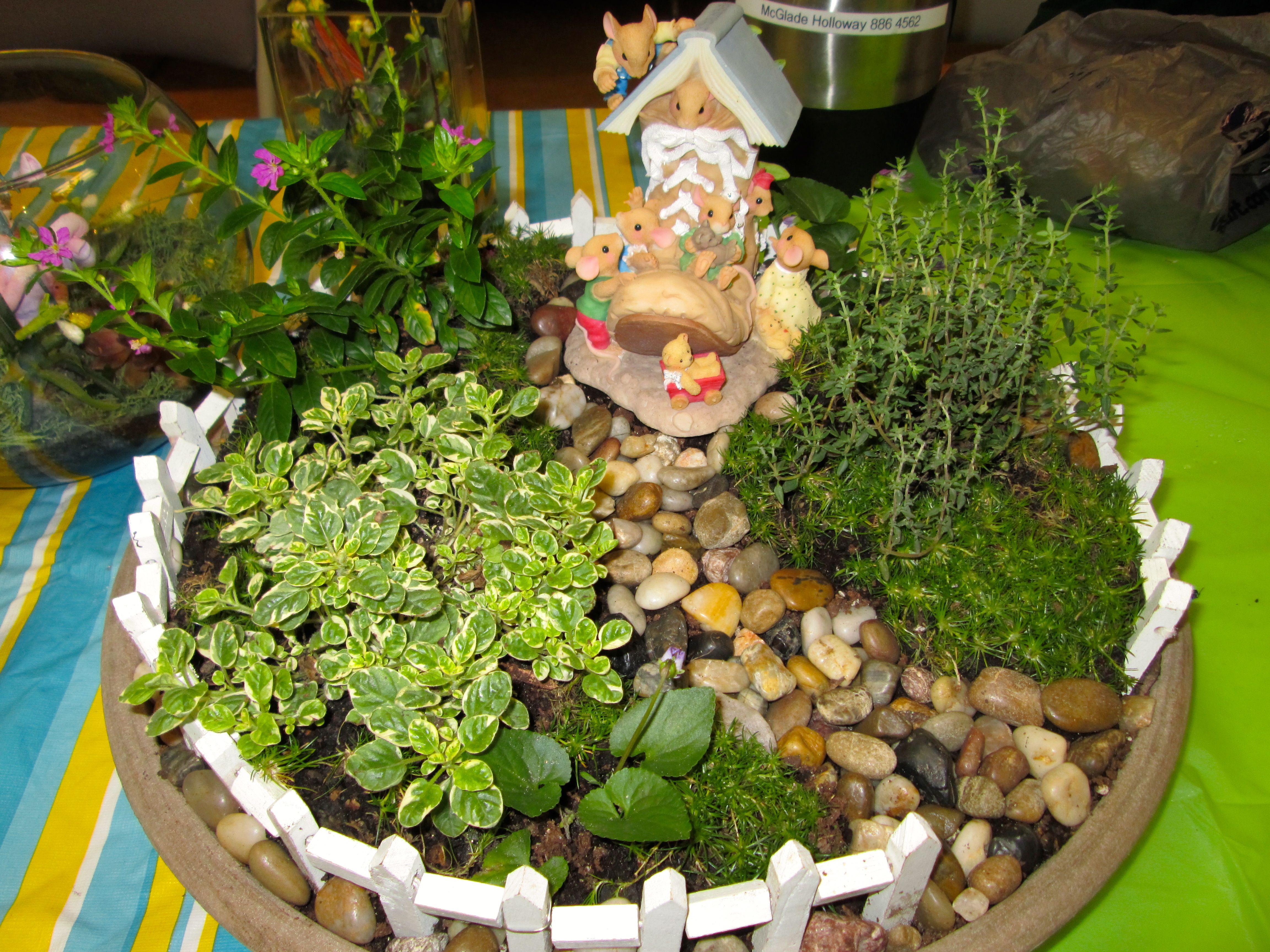 Dish Garden I Made This Past Spring Kids Pinterest Gardens