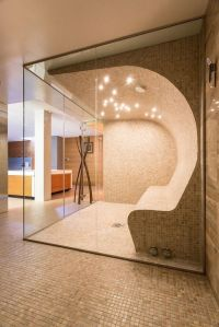 steam rooms for home | The Master of My Domain | Pinterest ...