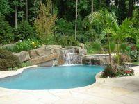 Backyard Swimming Pool Designs | Tropical backyard ...