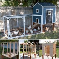 DIY Chicken Coops Plans That Are Easy To Build | Diy ...