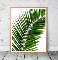 Tropical Palm leaf Wall Art, tree Print, Palm Photo ...