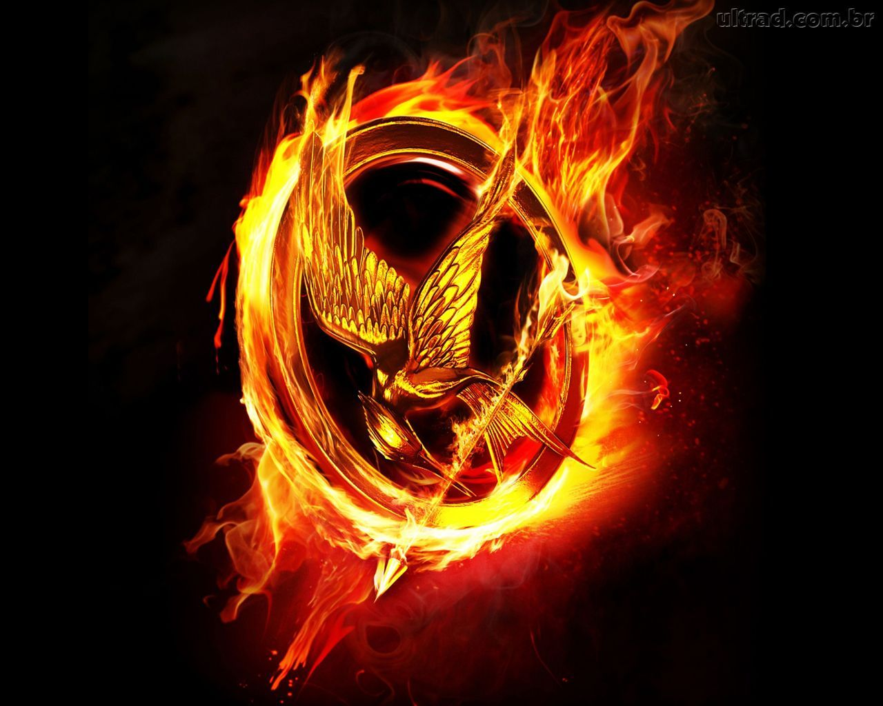 Moving Fire Hunger Games Mockingjay Pin