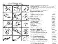 protist dichotomous key worksheet activity   The Biology ...