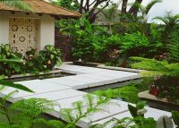 Tropical Landscape/Yard with Pathway, Fence, Beech Fern ...