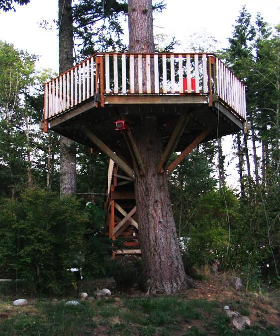 30 Tree Perch And Lookout Deck Ideas Adding Fun DIY Structures To